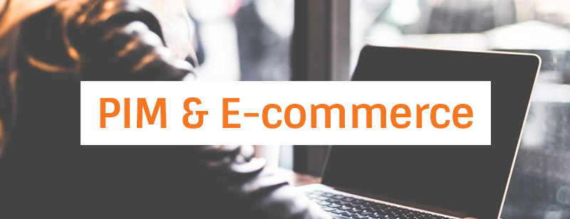 Use the PIM system for e-commerce purposes